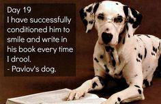 Pavlov's dog.