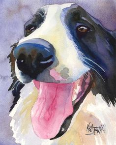 Border Collie Watercolor Painting by Ron Krajewskig