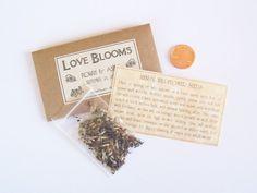 100 Steampunk Wedding Favors  Flower Seeds  by fairylandbazaar, $150.00