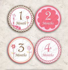 Pink Giraffe Monthly Growth Milestone Baby Onesie by StorkDelivery