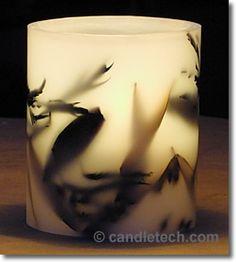 Hurricane Shells : Candle & Soap Making Techniques
