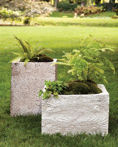 textured cement planters
