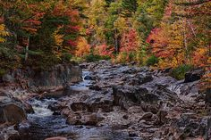 Beautiful foliage in Coos Canyon Maine