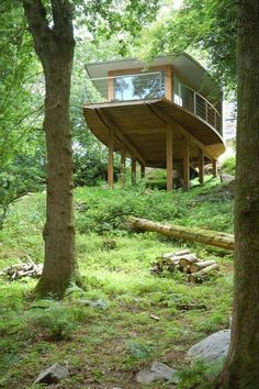 I want to live in a treehouse. Contemporary Treehouse - From Below
