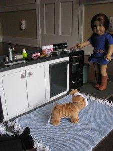 American Girl Doll Sink and Dishwasher....make this for Emily's Kitchen next?