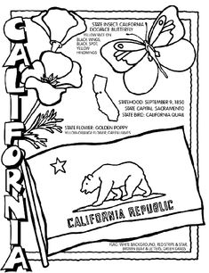 Coloring pages  for each state for unit study