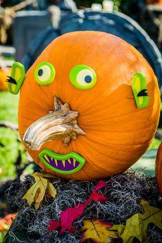 Matt Rogers carves pumpkins & shares safety tips! #Homeandfamily #Homeandfamilytv