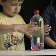 Cartesian Diver Just how do those fish and submarines rise and dive in the water? Learn the secret of air pressure and buoyancy with this homemade toy.