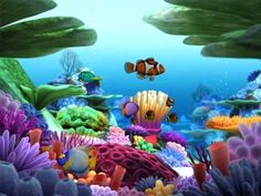 Proteção de Tela: Marine Life 3D | Download | TechTudo