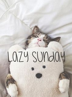 Lazy Sunday: 11x typ