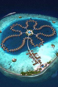 ღღ The Ocean Flower - Maldives
