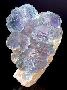 Tucson2013-172MW Fluorite Shangbao  Mine Hunan Province China 10cm. / Mineral Friends <3