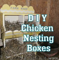 Making recycled nest boxes can be fun. Using home decor paints and using your imagination, can result in nest boxes your hens will be happy to use.