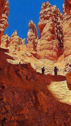 Looking up Wall Street Section - Navajo Loop Trail - Bryce Canyon National Park