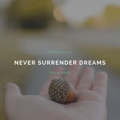 """Never surrender you"