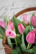 Tulips in a Basket,very pretty Love spring(: