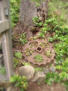 Rustic Garden Accent