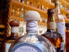 Tequila Drinking Guide