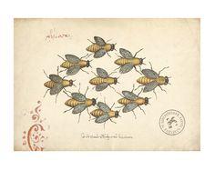 antique bee print #vintage #bees