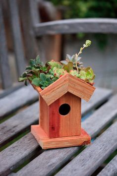 Birdhouse with Planter Roof  Redwood by thegrowingwall on Etsy, $20.00