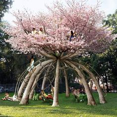 Wow! A pavilion made of cherry blossoms!! I LOVE Cherry Blossoms!:)