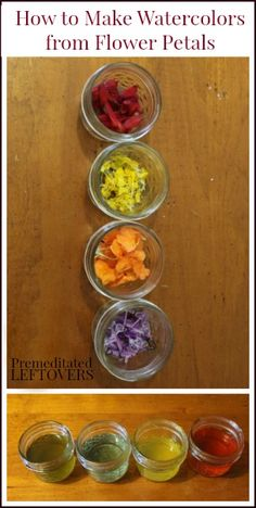 How make watercolor paints from flower petals - Fun activity to do with kids
