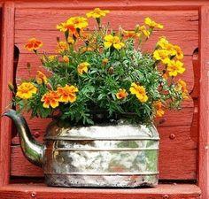 Idéias para campos e jardins: Floreiras