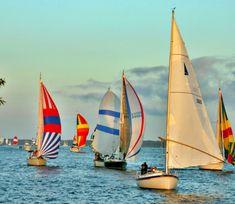 Let's go sailing...