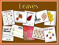 Leaves Preschool Pack