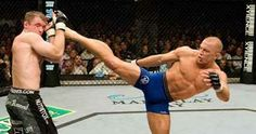 Another breed of GSP - my favorite UFC fighter.