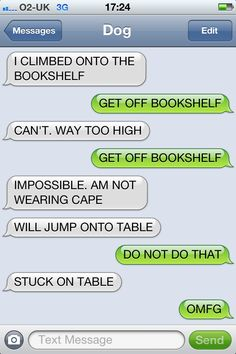 Texts from the dog  Get off the bookshelf  Impossible. Am not wearing cape. Will jump onto table...Stuck on table