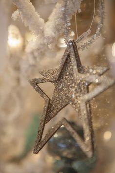 Star light, star bright.