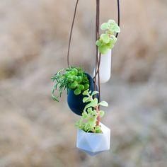wearable planters