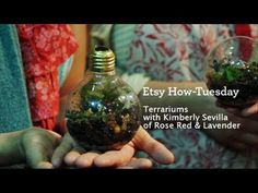 How-Tuesday: Light Bulb Terrariums