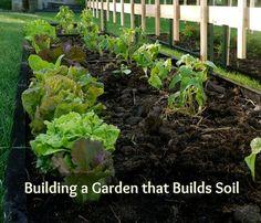 Building a Garden that Builds Soil