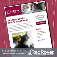Want to receive email updates about what's going on at RedRover?  Sign up today at www.RedRover.org/email