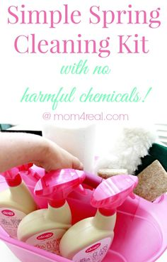 Simple Spring Cleaning Kit With No Harmful Chemicals #WalgreensOlogy #shop #cbias