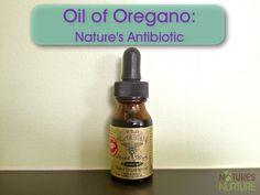 How to Use Oil of Oregano : Nature's Antibiotic