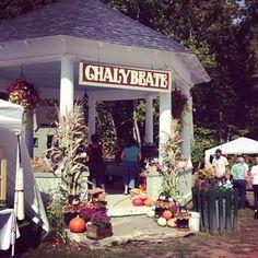 Sharon Springs Harvest Festival 2013
