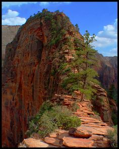 The Trail to Angel's Landing #1 - Zion National Park, Utah
