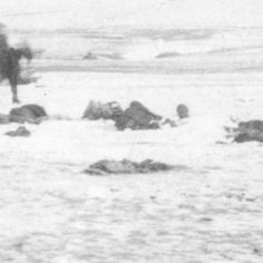Aftermath of Massacre at Wounded Knee occurring on December 29, 1890 :: Great Plains People