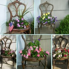 love using an old chair for a planter...nice impatiens!