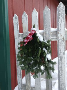 Fresh greenery on a weathered fence panel...simple winter beauty!