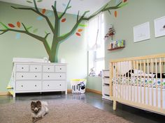 These parents designed this tree themselves, scanned it into the computer & printed it on a transparency that they then projected onto the wall & ceiling. They used a sticker machine to add adhesive to material & built their tree. wall colors, green walls, kids room design, wall decals, painted trees, babies nursery, babi room, nurseri idea, babies rooms