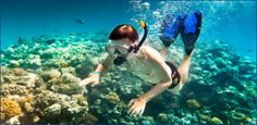 Lanai Snorkeling Boat Tour: Snorkel Cruise Trip from Maui