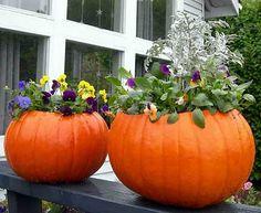 Pumpkin flower pots for porch decor.