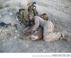 omg....love. A soldier and their Belgian Malinois buddy