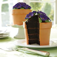 Blooming Flower Pot Cake  that would be so perfect for a bridal shower or mothers day!!