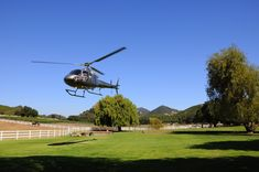 Fly away to #Malibu #Wine Country and enjoy a private #WineTasting, picnic lunch and a brief encounter with the estate's collection of wildlife. #Winery #Helicopter #PenAcademy