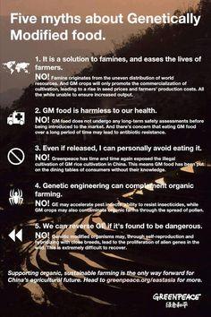 shared via nutiva.com - Five #myths about #GMOs